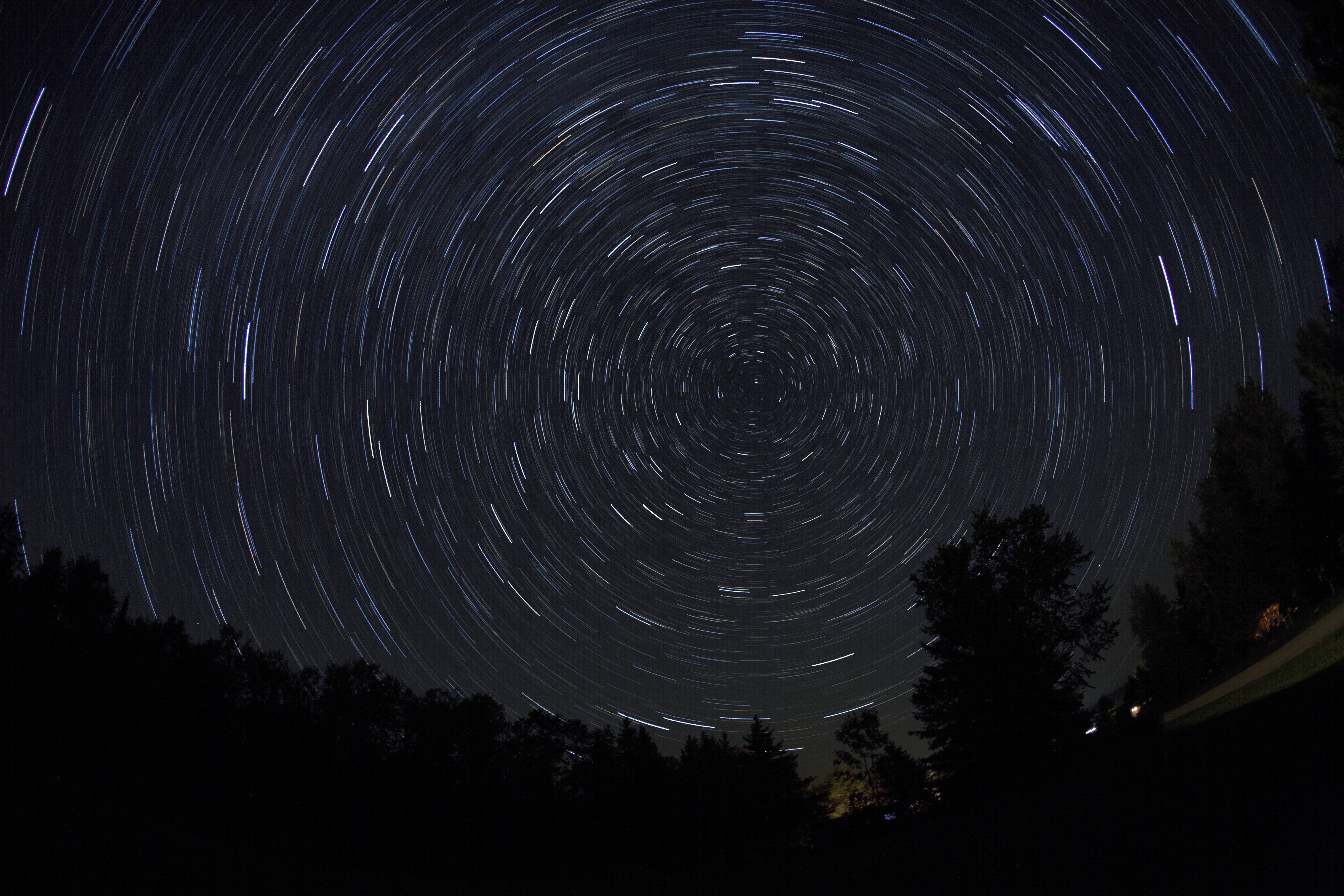нас фото движение звезд сша прошел ежегодный