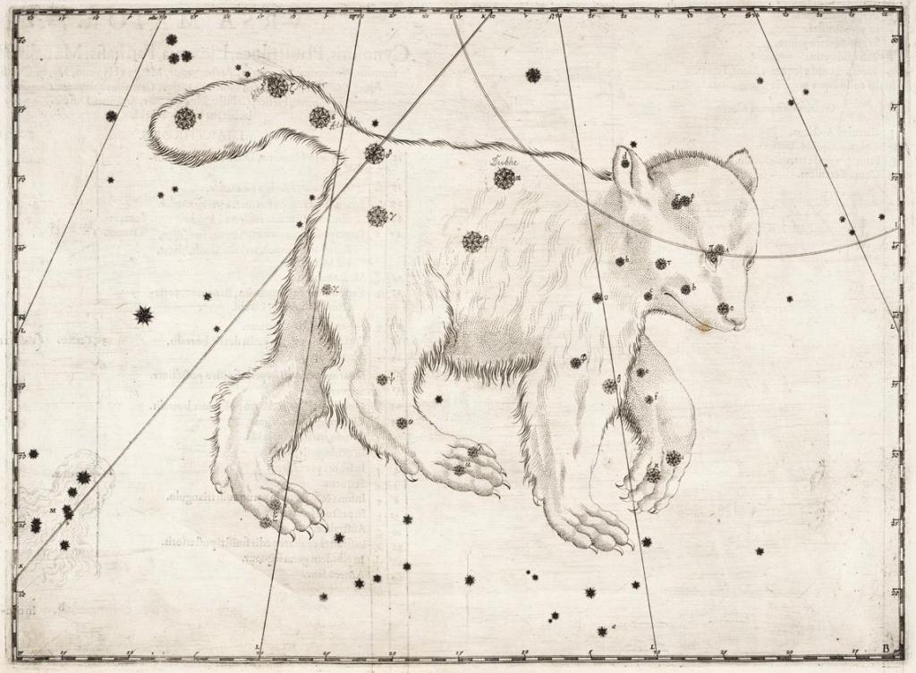 Созвездие Большой Медведицы Иоганн Байер Уранометрия 1603 год
