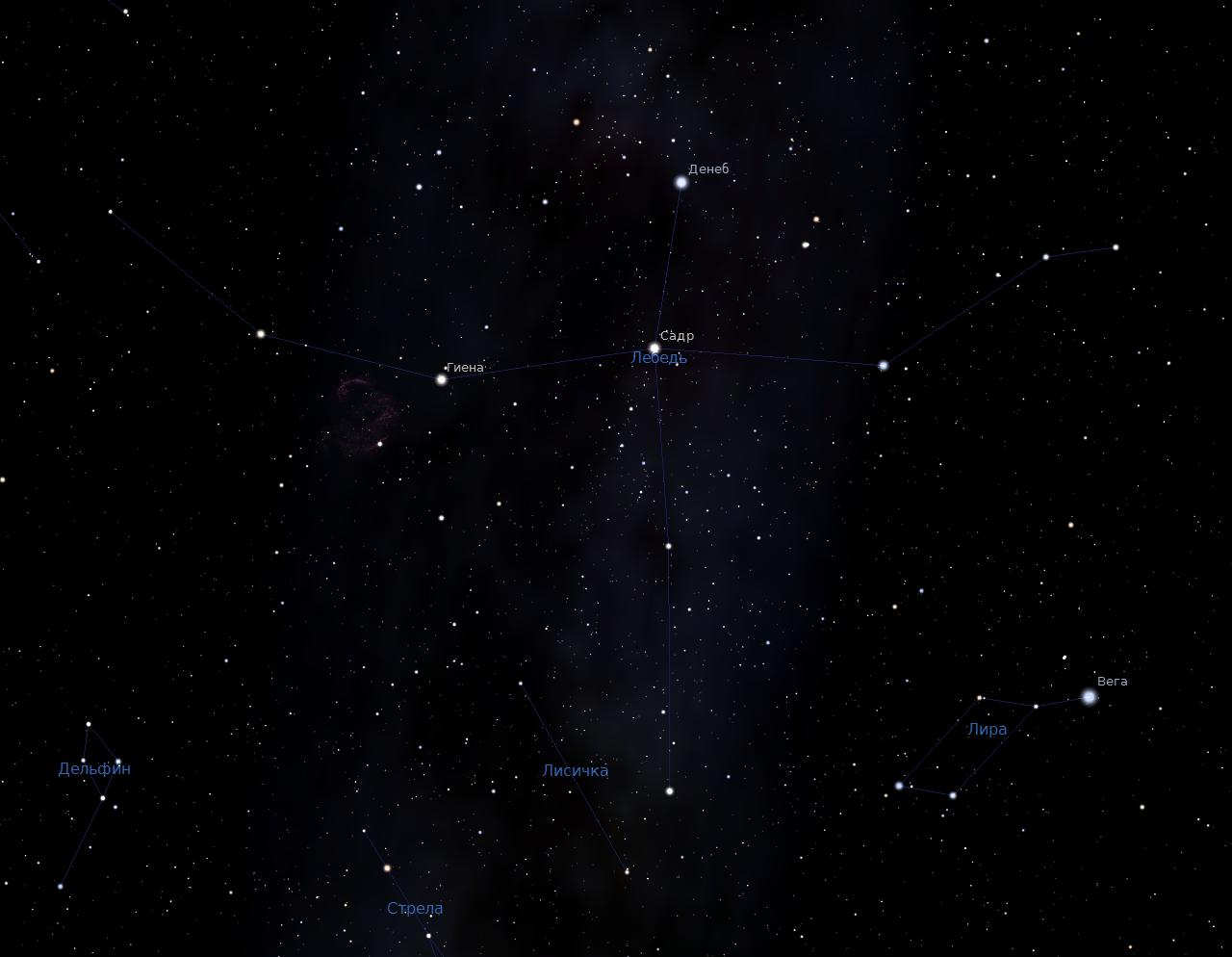 Лебедь - скриншот из программы планетария
