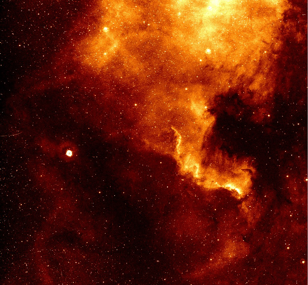 Туманность NGC 7000