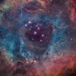 Рассеянное скопление NGC 2244 внутри туманности Розетка