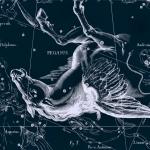 Созвездие Пегас из атласа Яна Гевелия