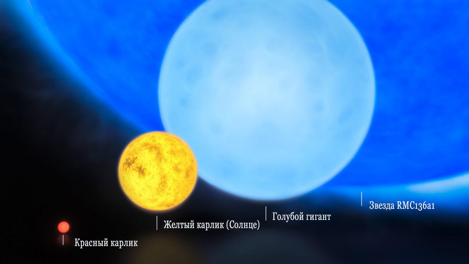 Звезды разных спектральных классов в сравнении