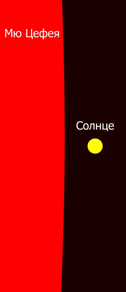 Сравнительные размеры μ Цефея и Солнца
