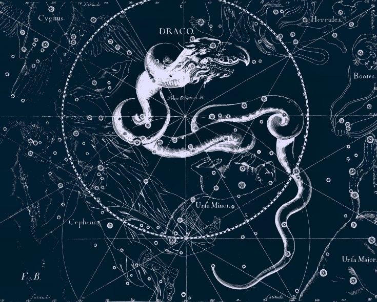 Дракон, рисунок Яна Гевелия из его атласа созвездий