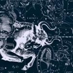 Созвездие Телец, рисунок Яна Гевелия из его атласа созвездий