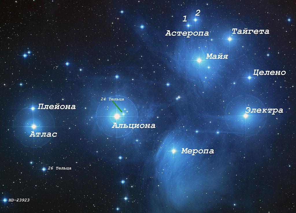 Звезды рассеянного скопления Плеяды