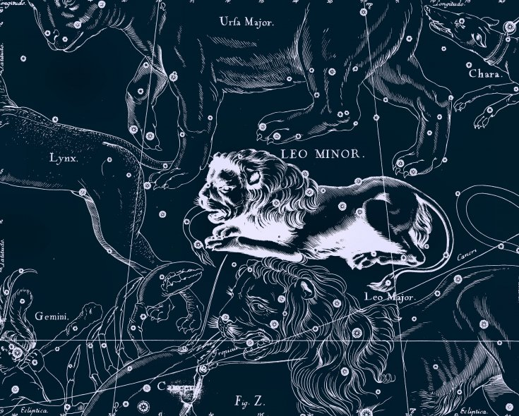 Малый Лев, рисунок Яна Гевелия из его атласа созвездий
