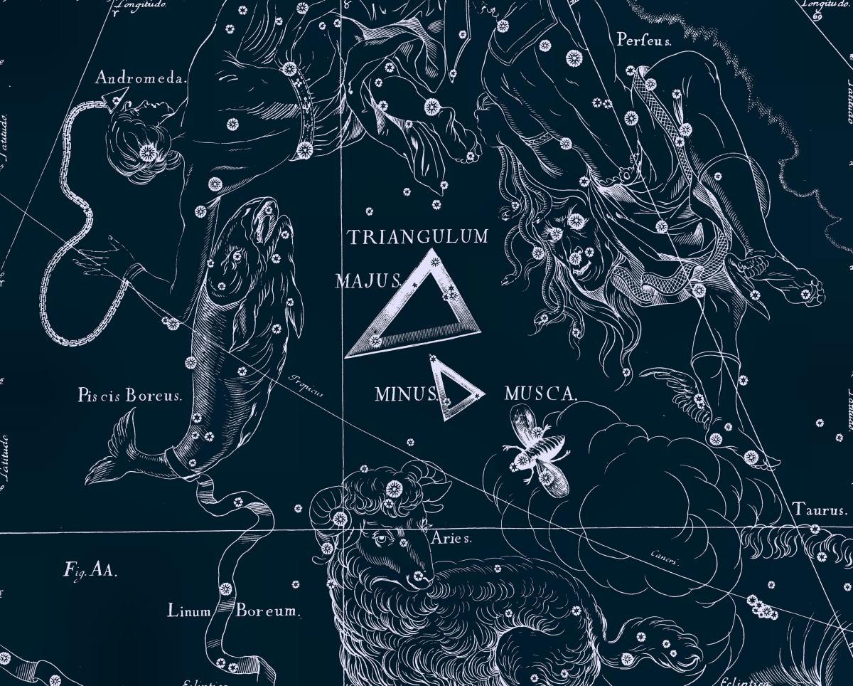 Муха, рисунок Яна Гевелия из его атласа созвездий
