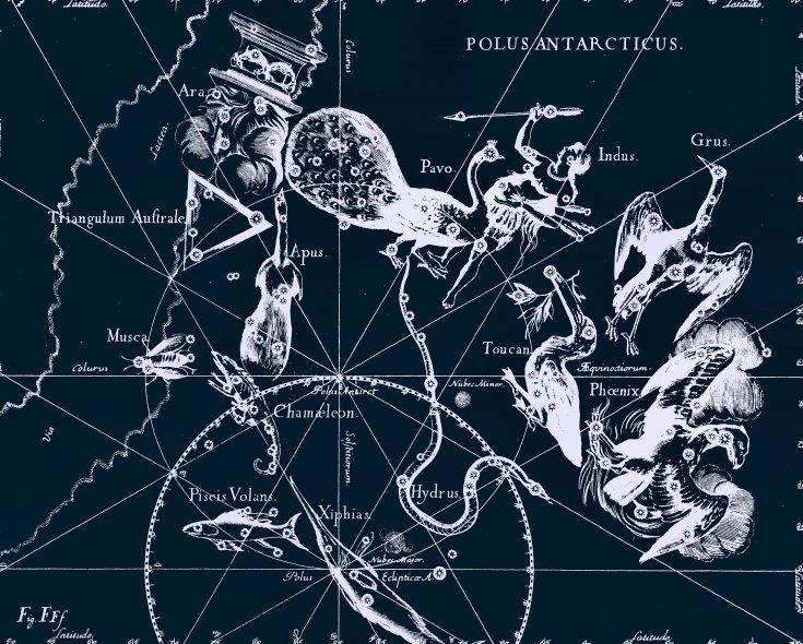 Созвездие Хамелеон, рисунок Яна Гевелия из его атласа созвездий