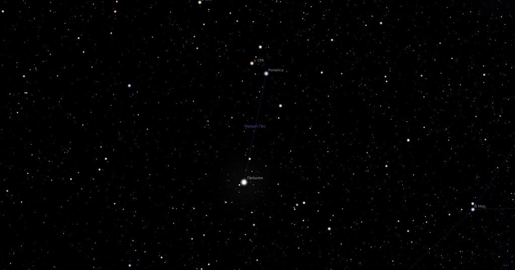 Созвездие Малый Пёс, вид в программу планетарий Stellarium
