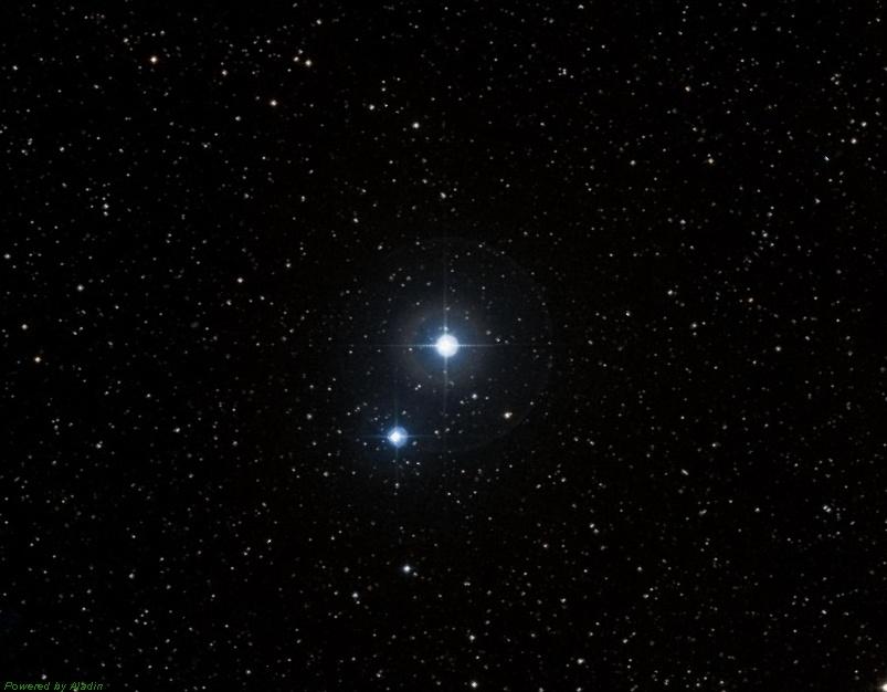 Звезда гамма Малого Коня