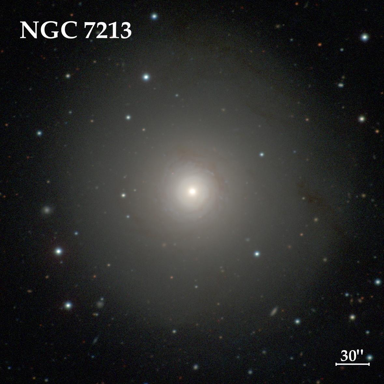 NGC 7213