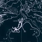 Ящерица, рисунок Яна Гевелия из его атласа созвездий