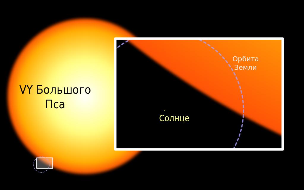 VY Большого Пса и Солнце