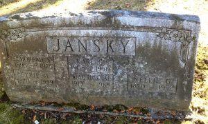 Памятник на могиле безвременно ушедшего учёного