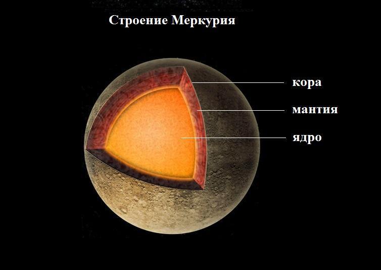 Схема строения Меркурия