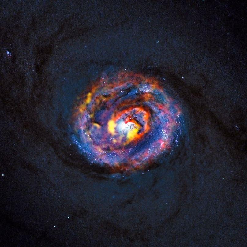 Композитный вид галактики NGC 1433 с черной дырой в центре