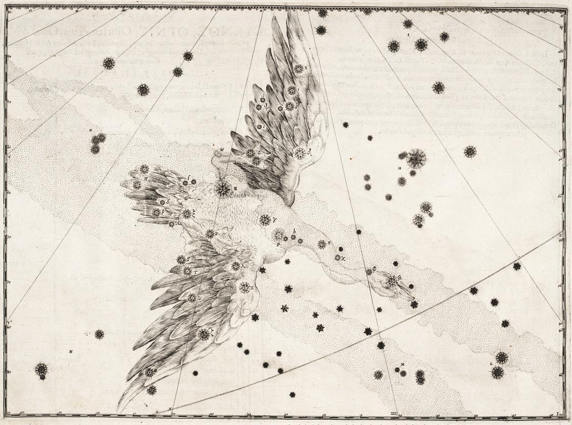 """Созвездие Лебедя из атласа Иоганна Байера """"Уранометрия"""" 1603 год"""
