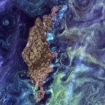 Фитопланктон из космоса
