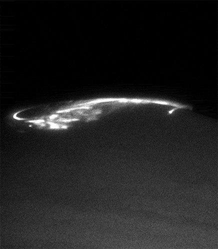 Полярное сияние на Юпитере, сфотографированное космическим телескопом Хаббл, весной 2005 года