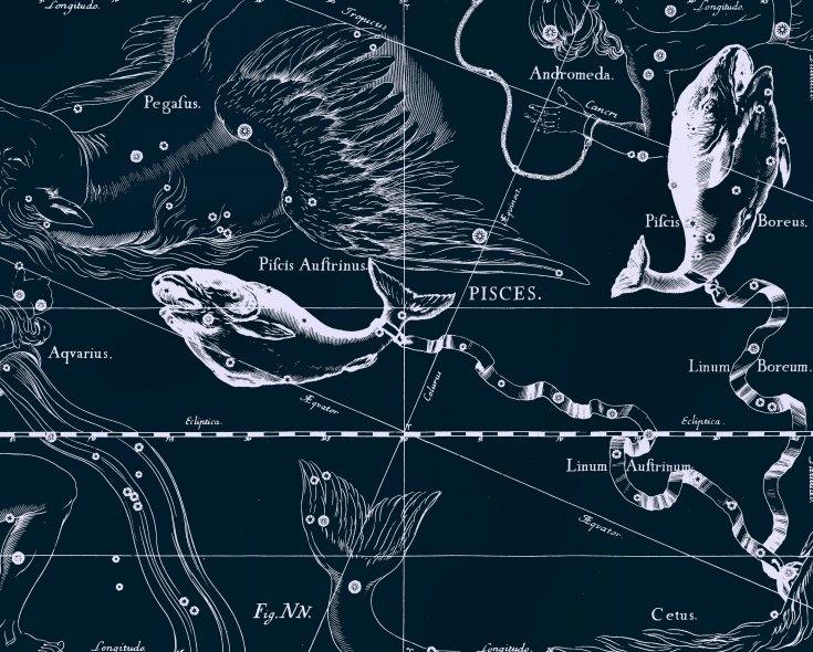 Рыбы, рисунок Яна Гевелия из его атласа созвездий