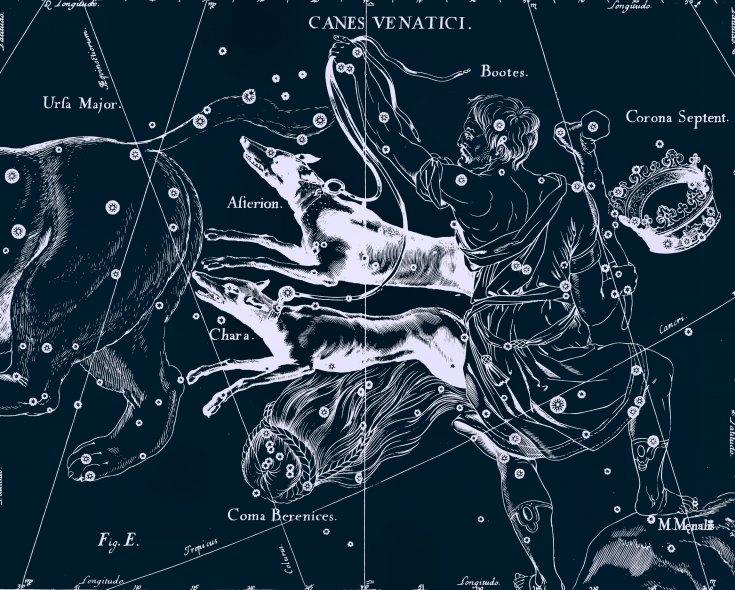 Созвездие Гончие Псы, рисунок Яна Гевелия из его атласа созвездий