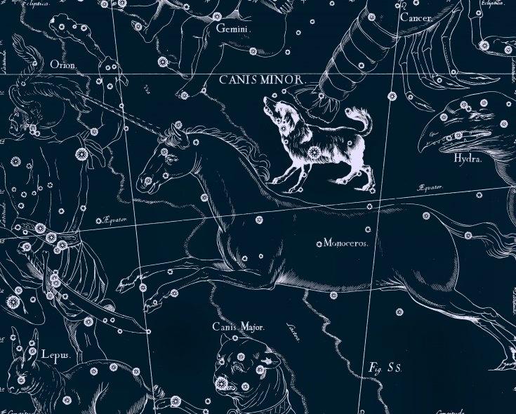 Малый Пёс, рисунок Яна Гевелия из его атласа созвездий