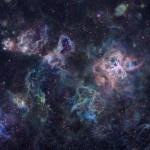 Туманность Тарантул, размером более 1 000 световых лет, - это гигантская эмиссионная туманность внутри соседней галактики