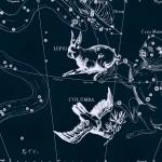 Голубь, рисунок Яна Гевелия из его атласа созвездий