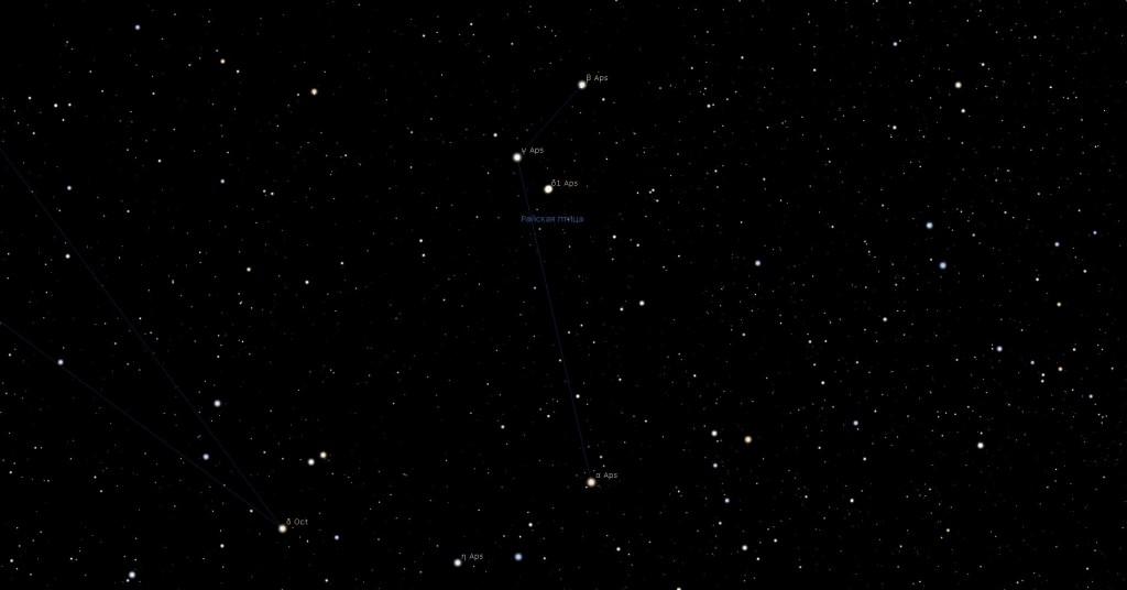 Созвездие Райская Птица, вид в программу планетарий Stellarium