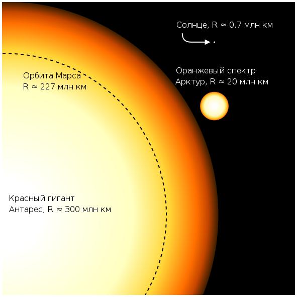 Сравнение размеров Антареса, Арктура, Солнца и орбиты Марса
