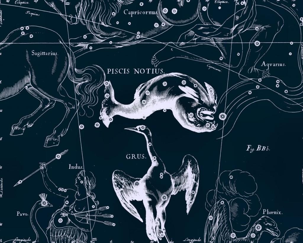 Южная Рыба, рисунок Яна Гевелия из его атласа созвездий