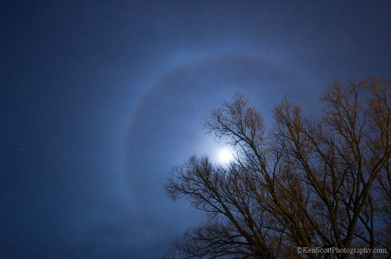 Лунное гало прячется за деревьями