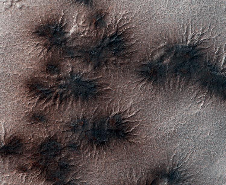 Пауки на Марсе