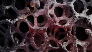 Космическая инфляция в долгосрочных масштабах создает сложную волокнистую структуру