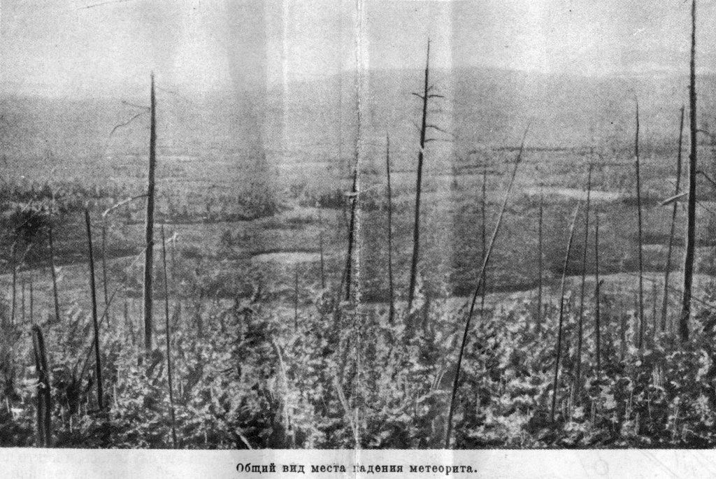 Общий вид леса на месте падения метеорита