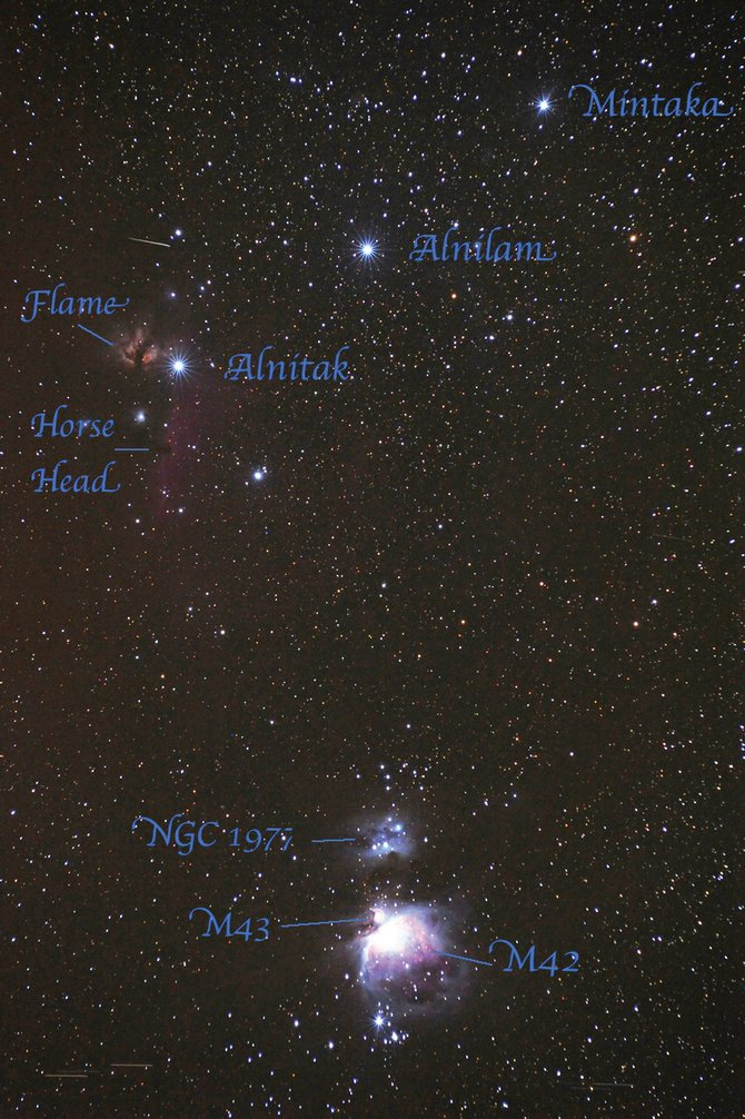 Звезды Альнитак, Альнилам и Минтака, туманность Конская голова и M42.