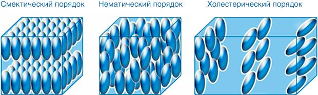 порядки разных термотропных ЖК