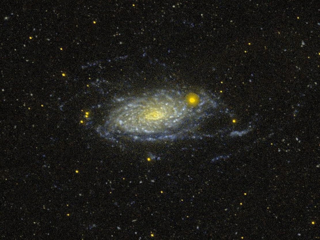Галактика Подсолнух M63