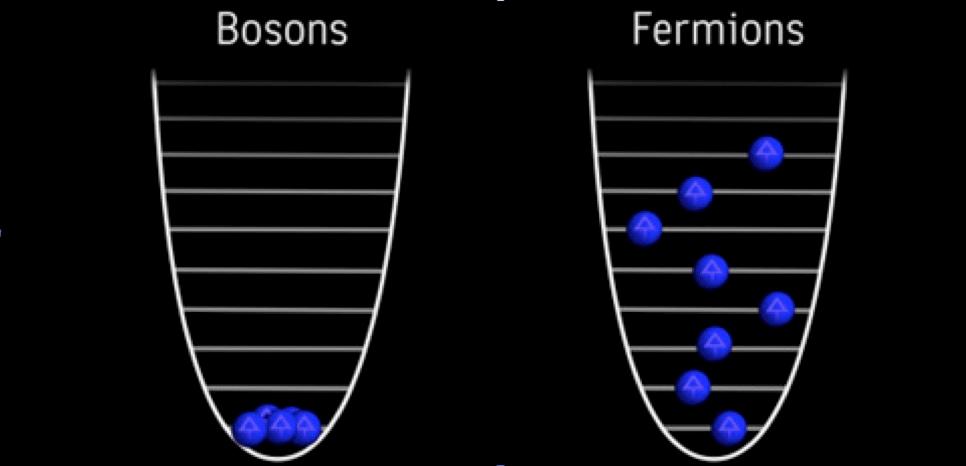 Отсутствие принципа Паули для бозонов и наличие - для фермионов