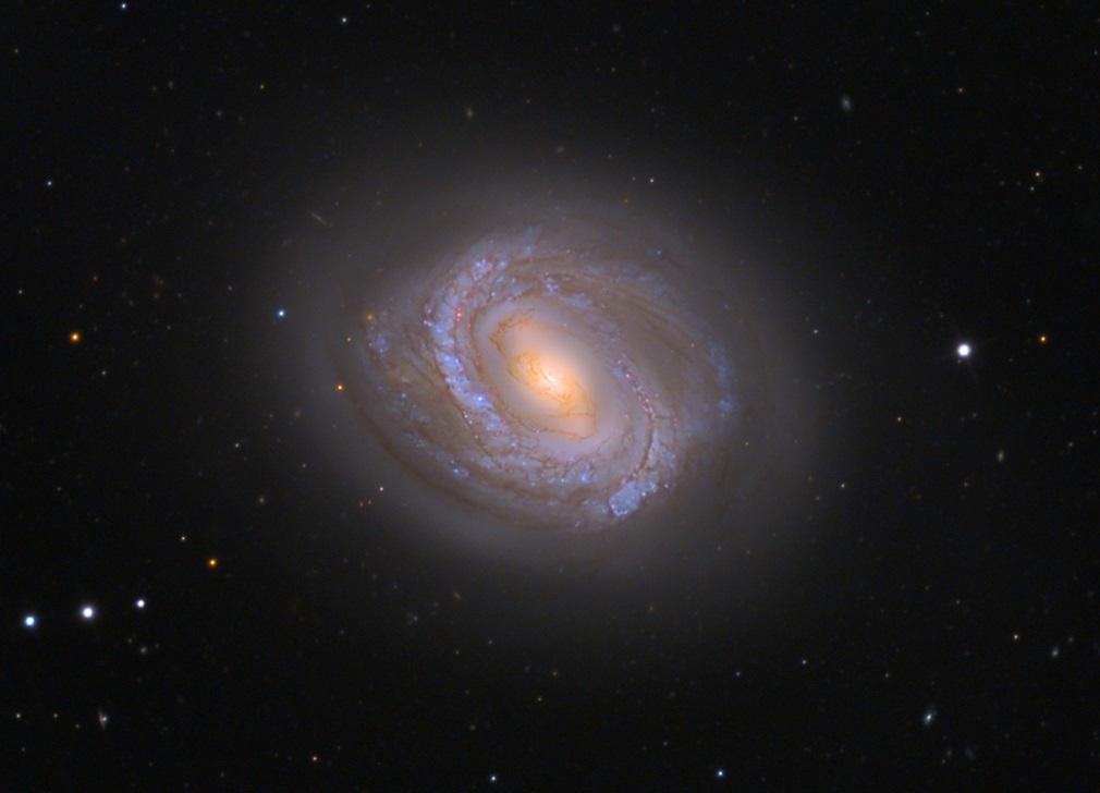 Галактика M58