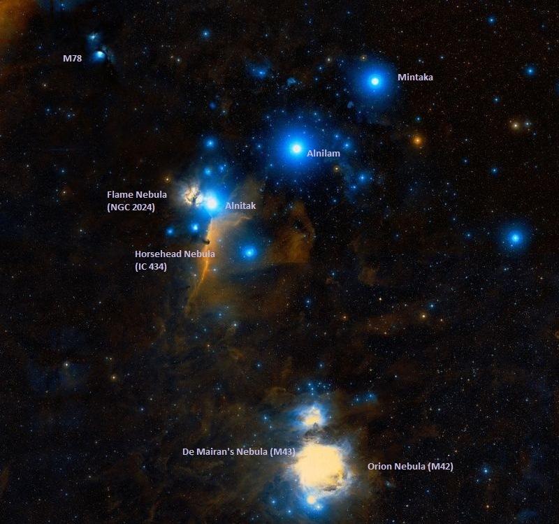 Соседи туманности Мессье 78 (сверху вниз): туманность Пламя, Конская Голова, де Мерана, Ориона