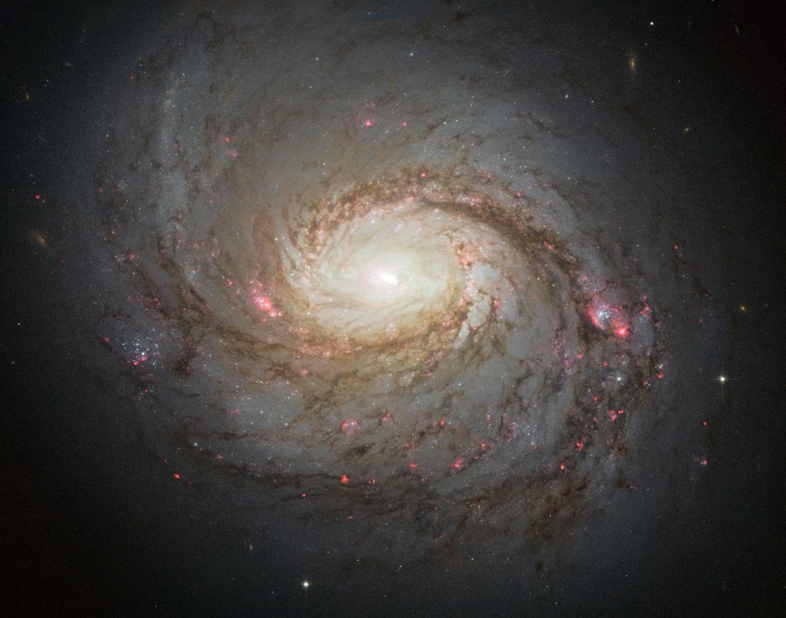 Галактика M77