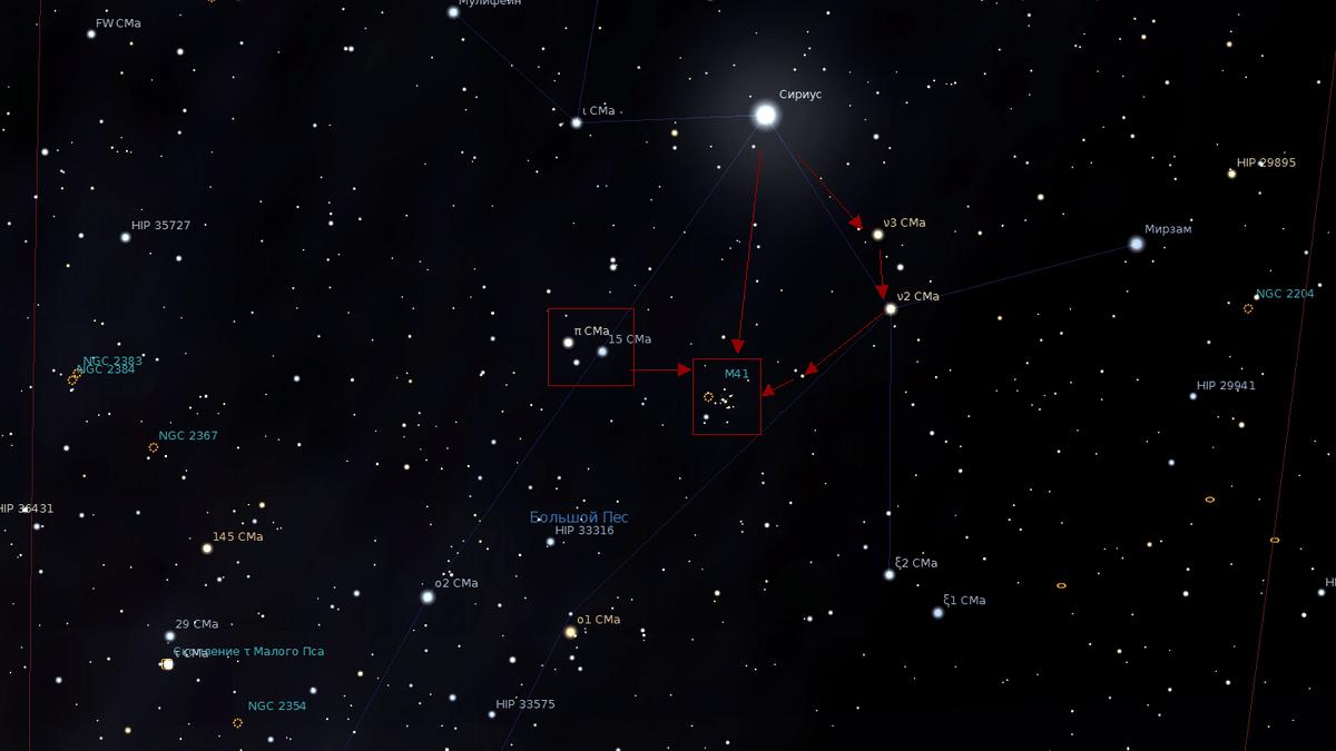 Положение звездного скопления M41 в созвездии Большой Пес