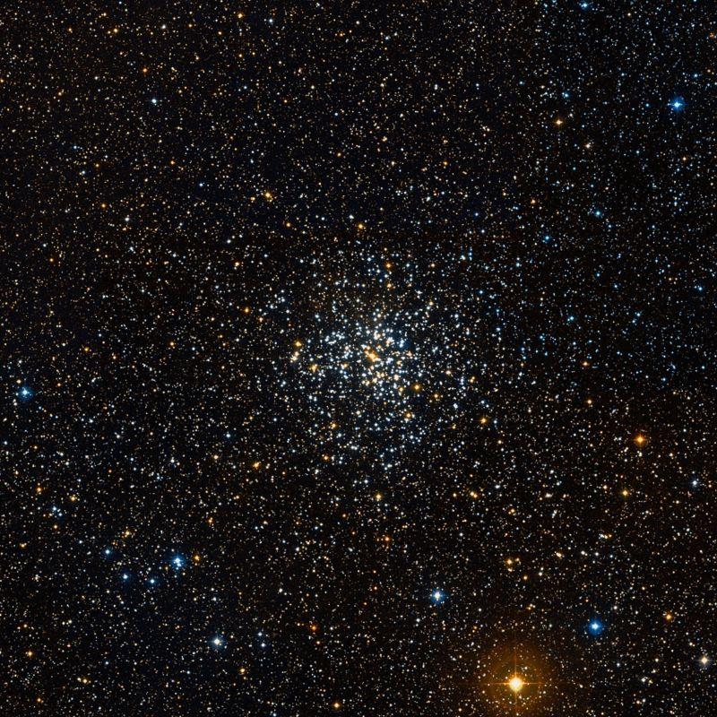 Рассеянное скопление Мессье 37