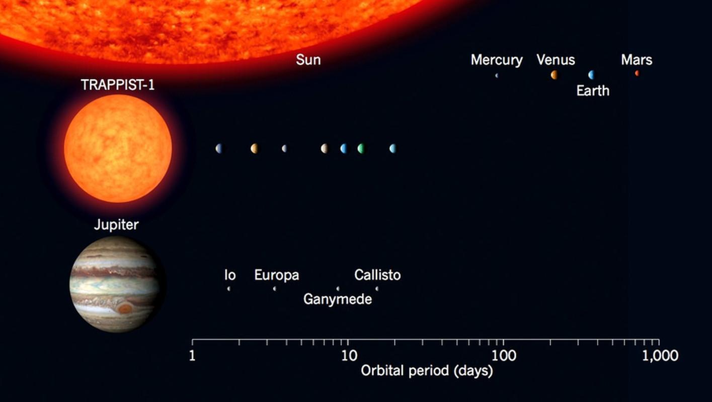 Размер экзопланет и их орбит в системе TRAPPIST-1 по сравнению с планетами Солнечной системы