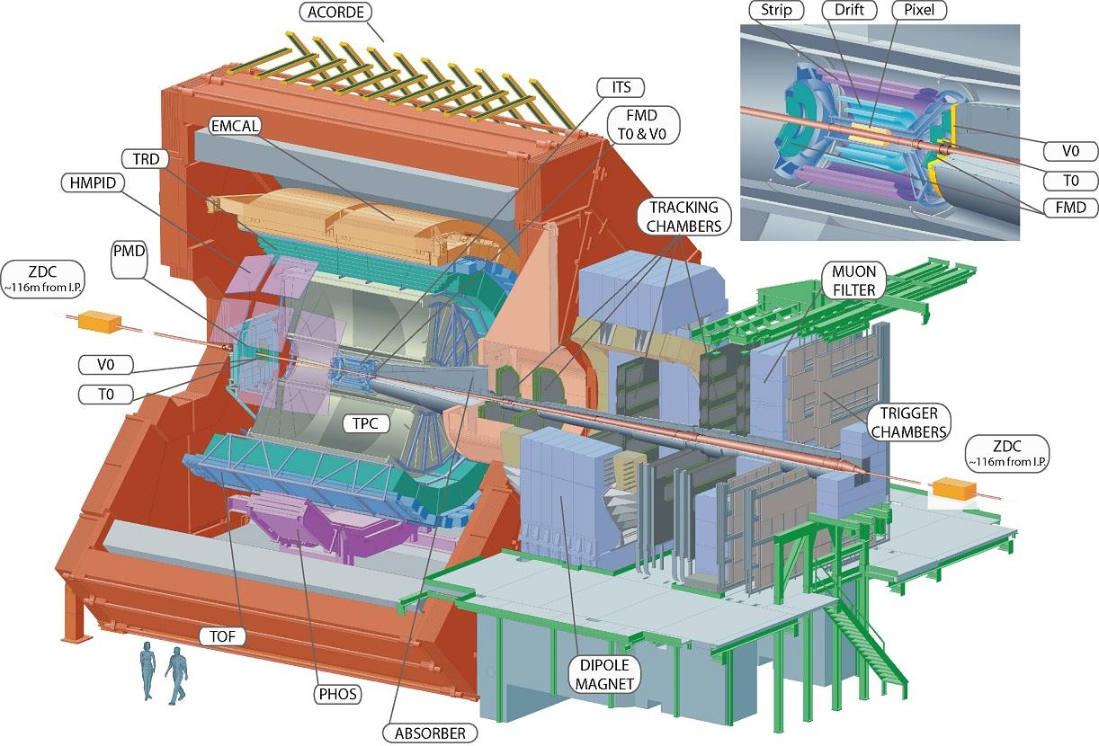 Детектор ALICE и его компоненты
