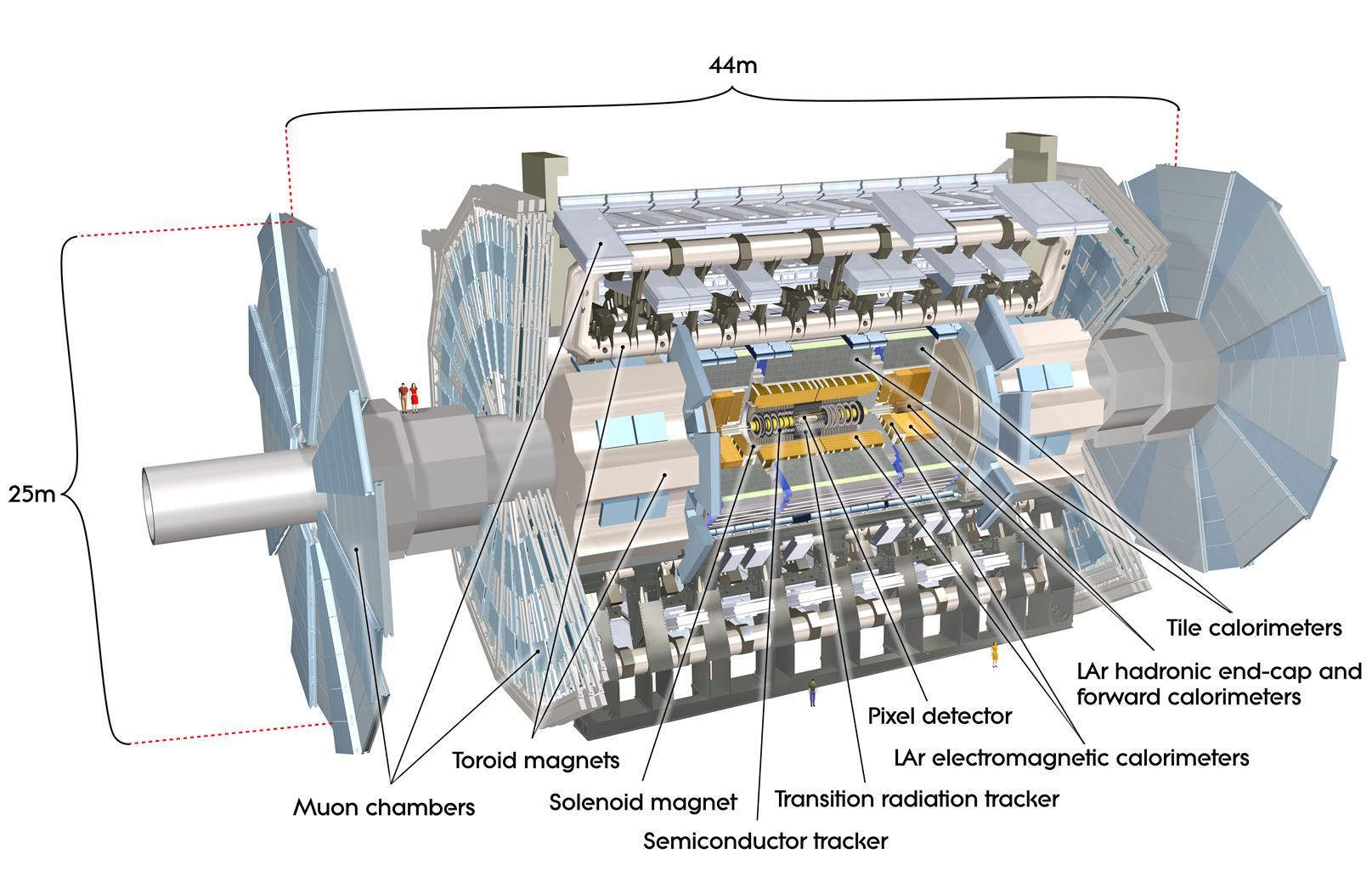 Детектор ATLAS и его компоненты