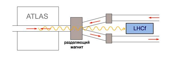 Схема расположения детекторов эксперимента LHCf